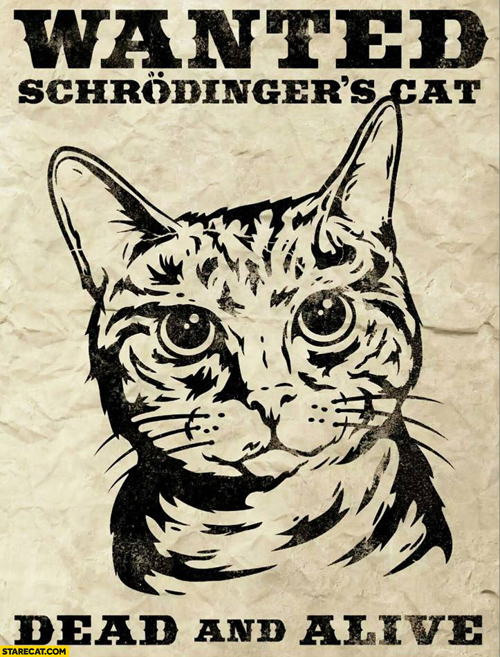 Wanted Schrodingers cat dead and alive