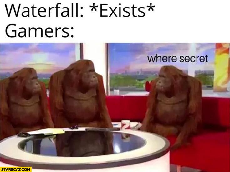 Waterfall: *exists* gamers where secret monkeys