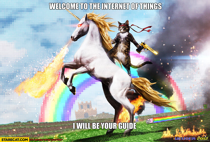 Welcome to the internet of things I will be your guide. Cat riding on a unicorn