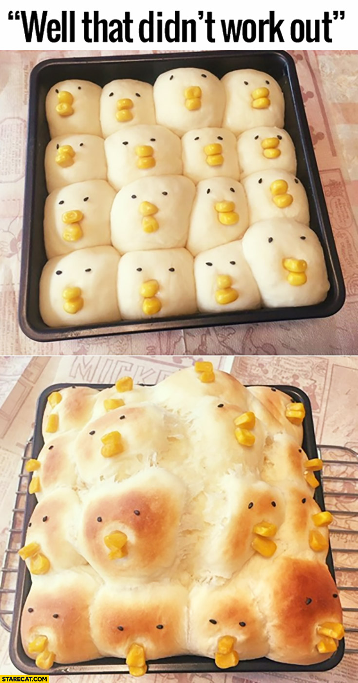 Well that didn't work out cooking cute birds