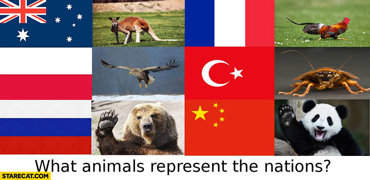 What animals represent nations: France rooster, Turkey cockroach