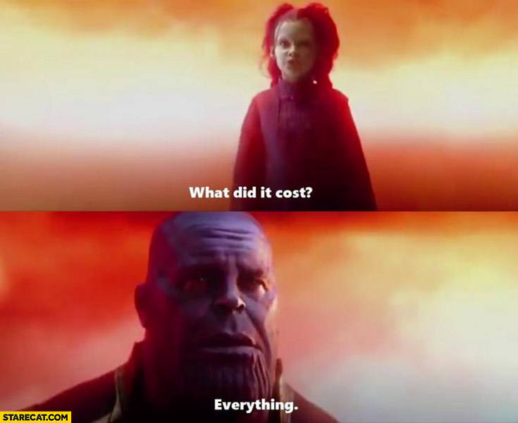 What did it cost? Everything infinity war meme