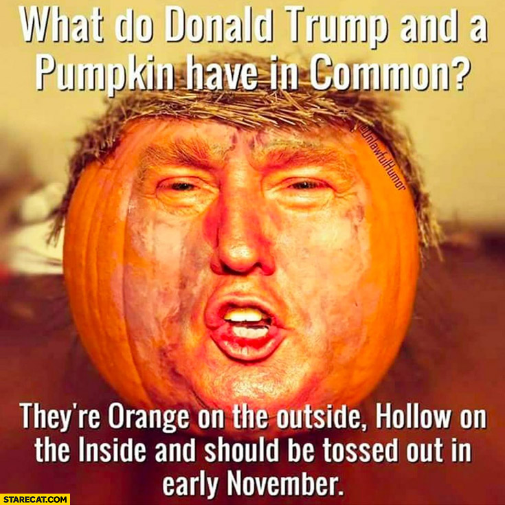 What do Donald Trump and a pumpkin have in common? They're orange on the outside, hollow on the inside and should be tossed out in early November