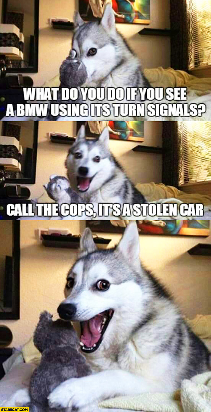 What do you do if you see a BMW using its turn signals? Call the cops it's a stolen car. funny dog