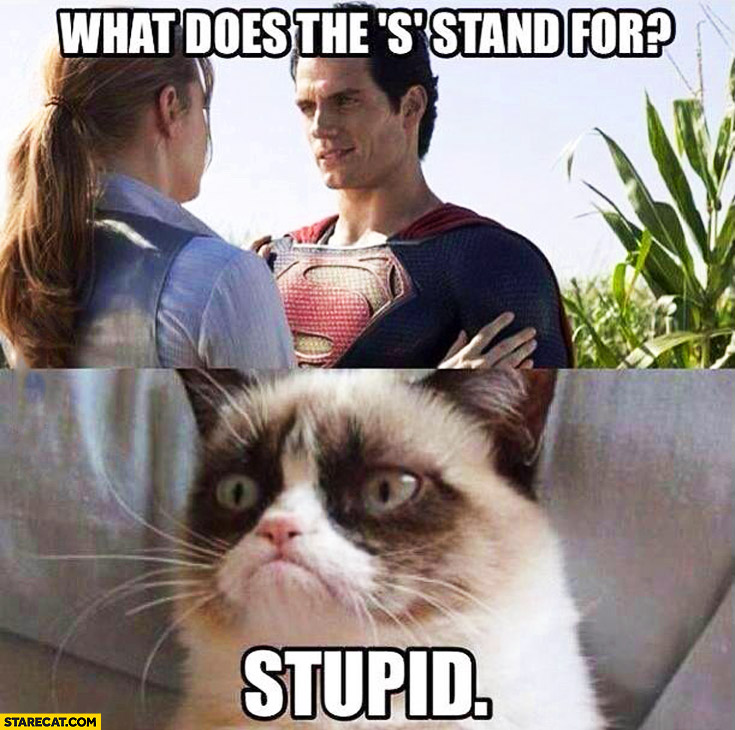 "What does the ""s"" stand for? Superman Stupid grumpy cat"