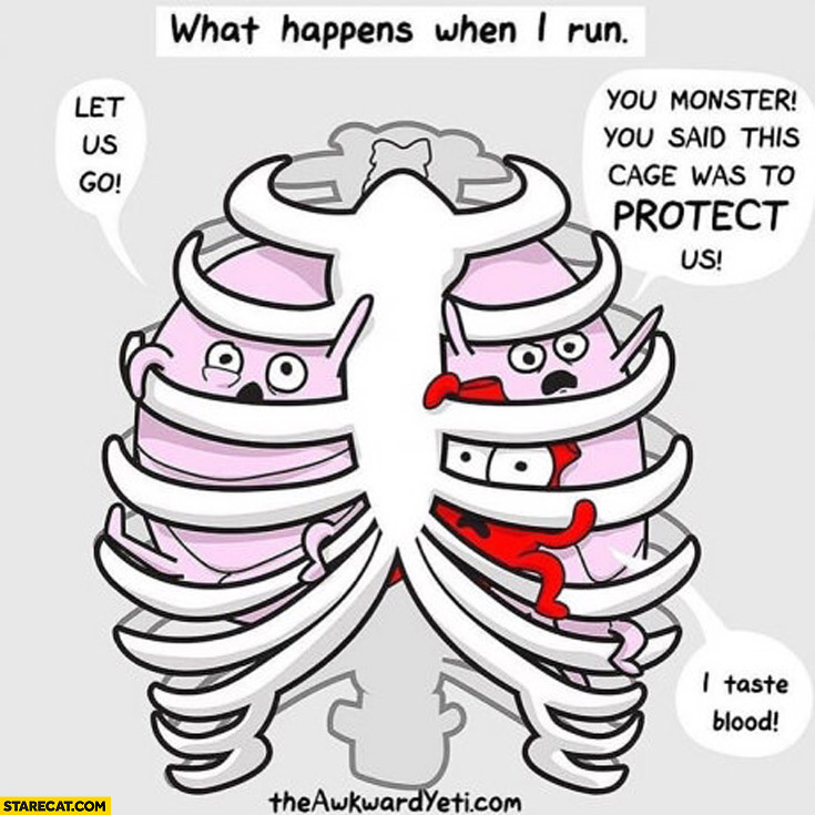 What happens when I run: lungs heart let us go you said ribs were to protect us
