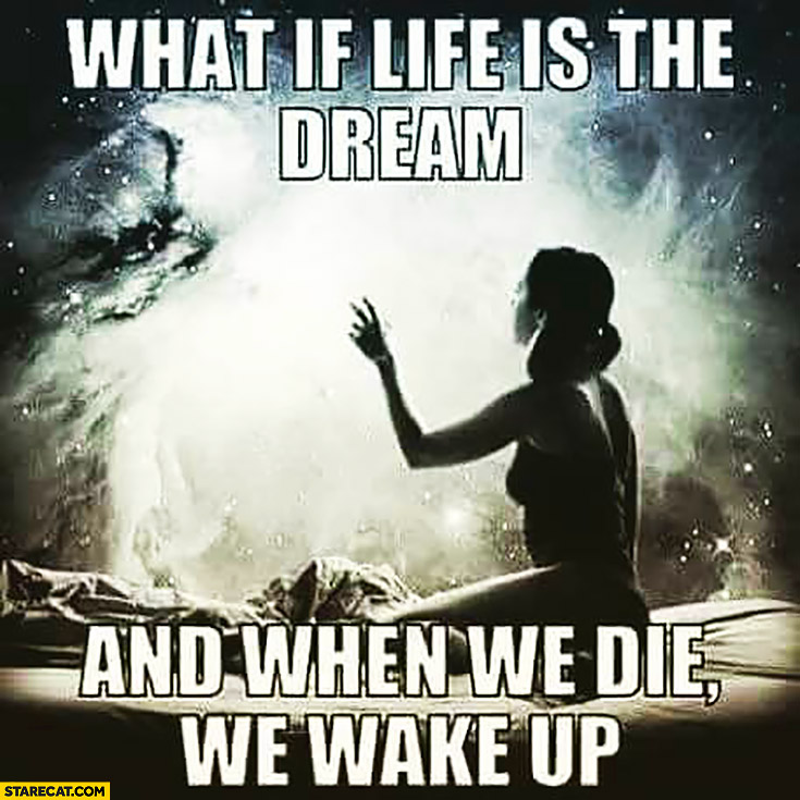What if life is the dream and when we die we wake up?