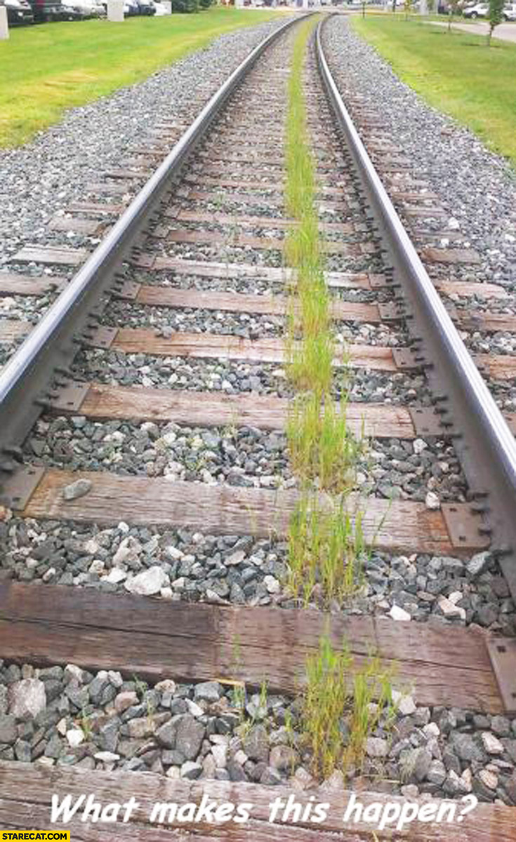 What makes this happen green line under railway