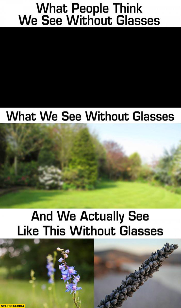 What people think we see without glasses, what we see without glasses and we actually see like this without glasses