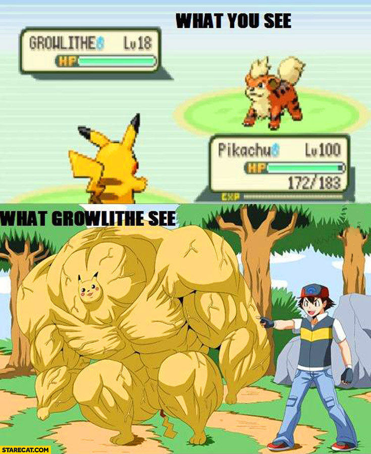 What you see what growlithe see Pokemon