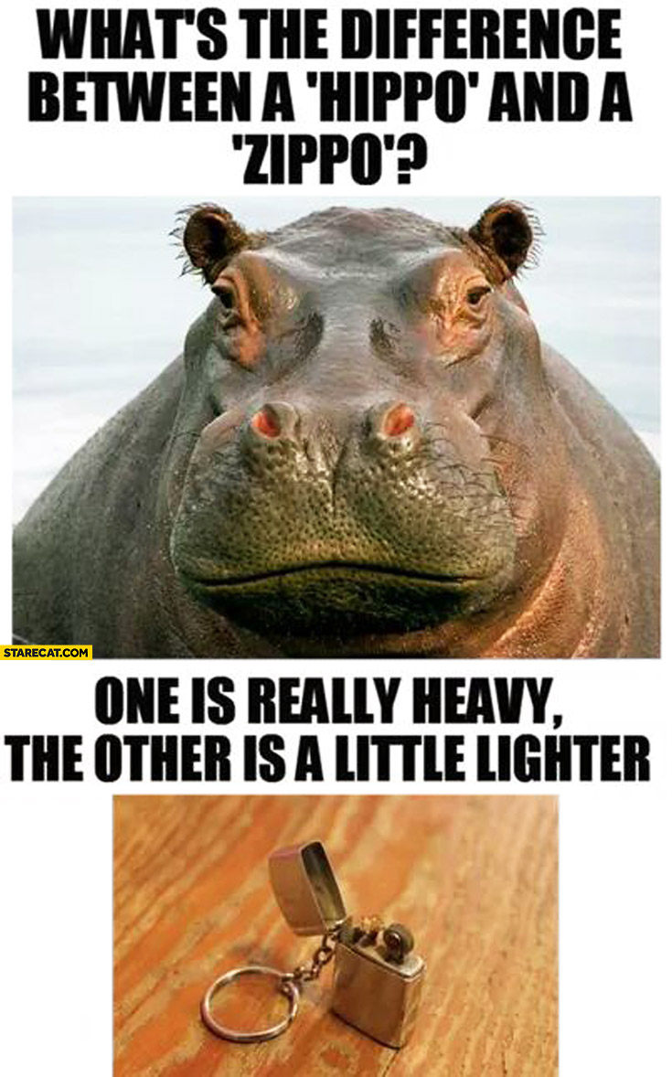 What's the difference between hippo and zippo? One is really heavy the other is a little lighter