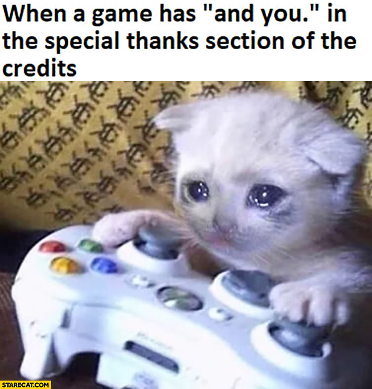 "When a game has ""and you"" in the special thanks of the credits cute cat crying"