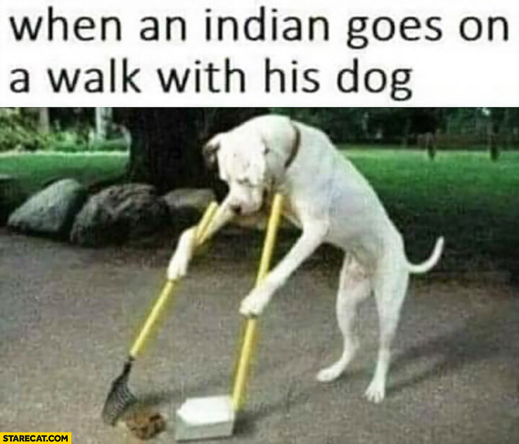 When an indian goes on a walk with his dog, dog cleans shit after his owner