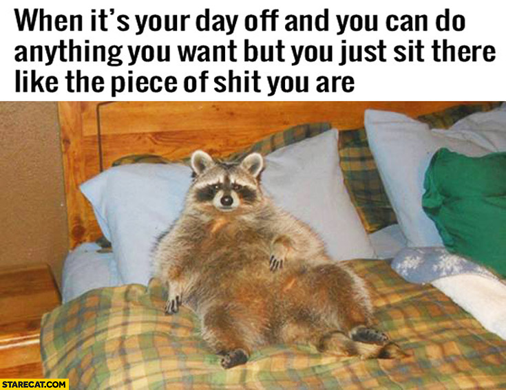 When it's your day off and you can do anything you want but you just sit there like the piece of shit you are raccoon