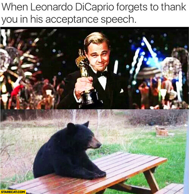When Leonardo DiCaprio forgets to thank you in his acceptance speech sad bear The Revenant