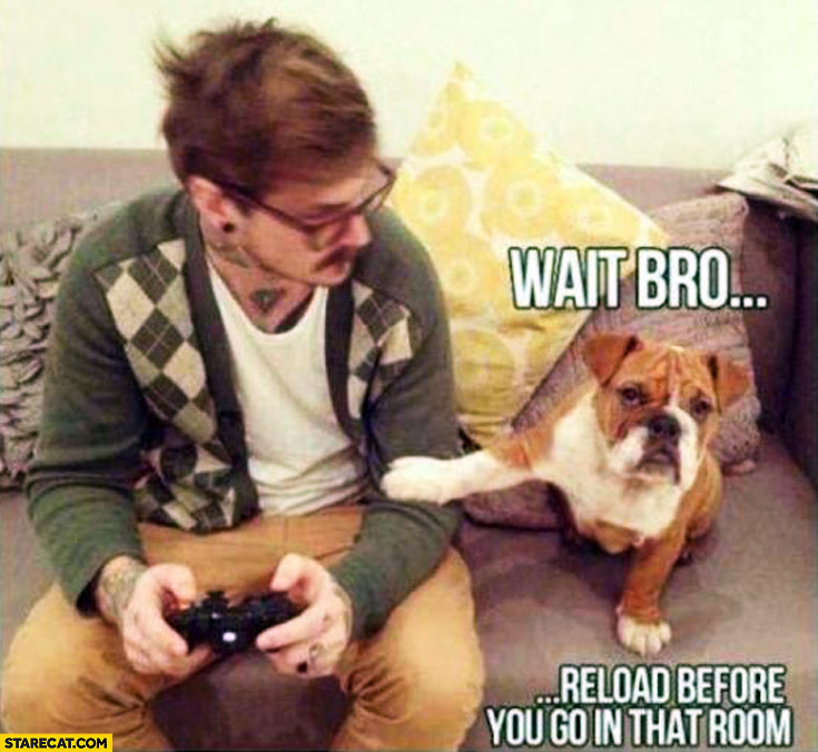 When playing a game dog says: wait bro, reload before you go to that room