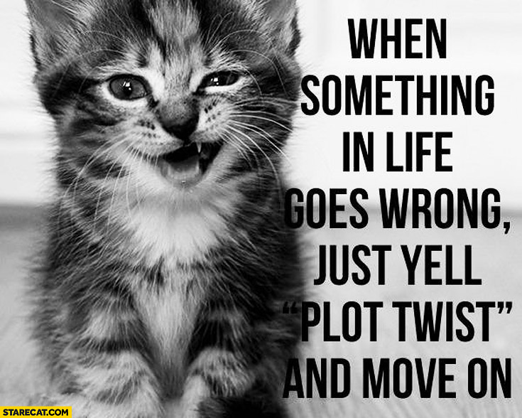 When something in life goes wrong just yell plot twist and move on