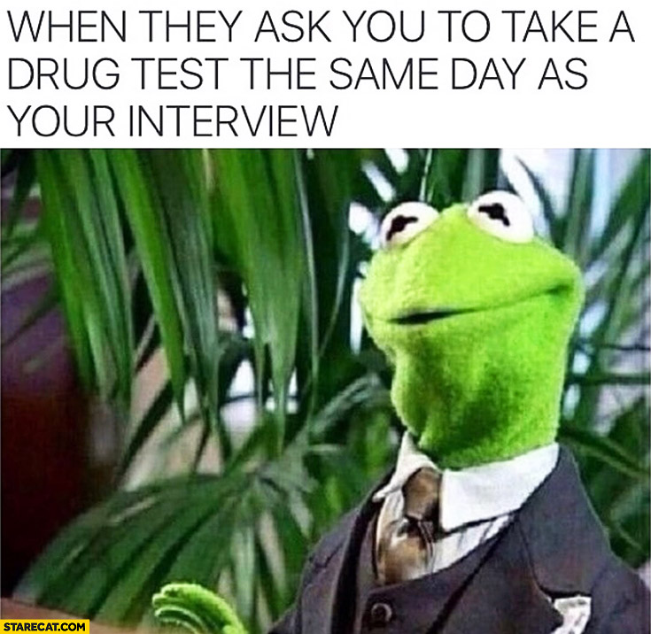 When they ask you to take a drug test the same day as your interview Kermit Frog