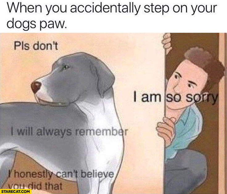 When you accidentally step on your dogs paw, I am so sorry
