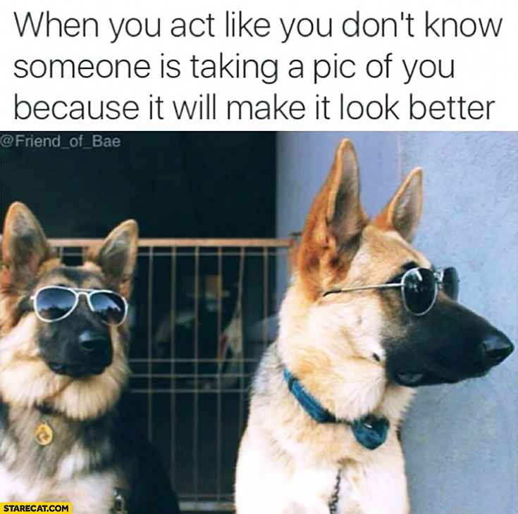When you act like you don't know someone is taking a picture of you because it will make it look better dogs wearing glasses