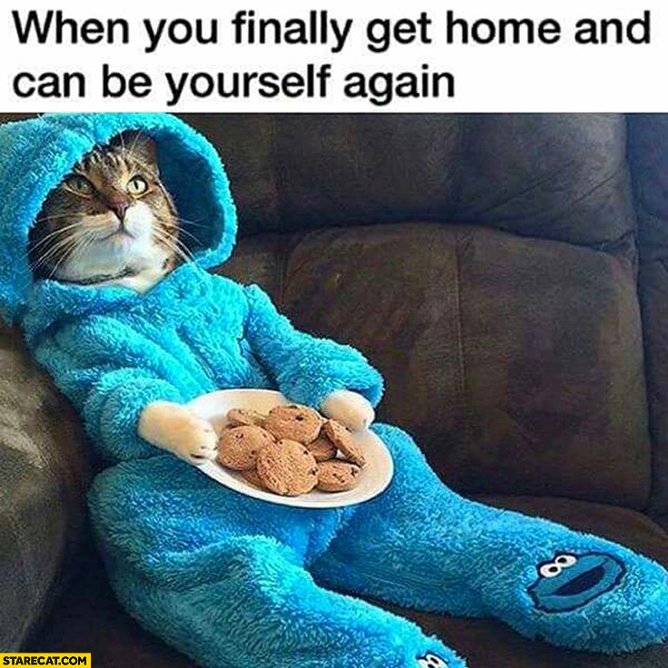 When you finally get home and can be yourself again cat cookie monster outfit