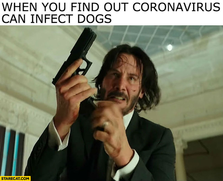 When you find out coronavirus can infect dogs John Wick Keanu Reeves