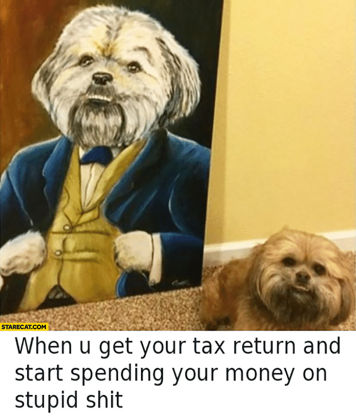 When you get your tax return and start spending your money on stupid shit dog bought a painting of himself