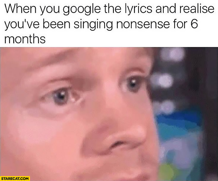 When you google the lyrics and realise you've been singing nonsense for 6 months meme
