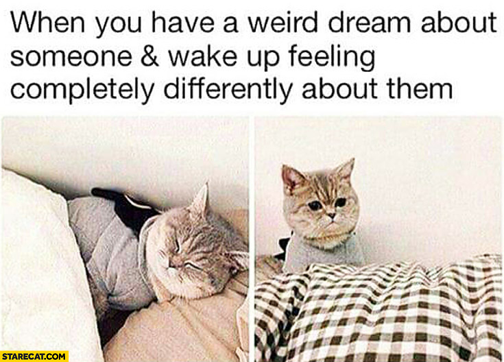 When you have a weird dream about someone and wake up feeling completly differently about them cat