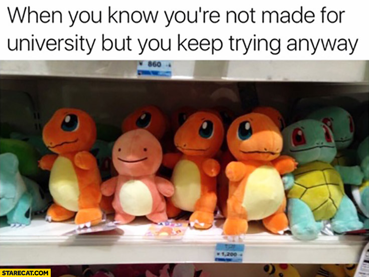 When you know you're not made for University but you keep trying anyway Pokemon fail