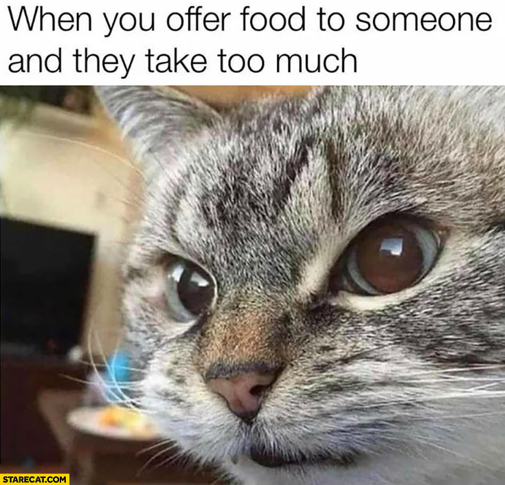 When you offer food to someone and they take too much angry cat