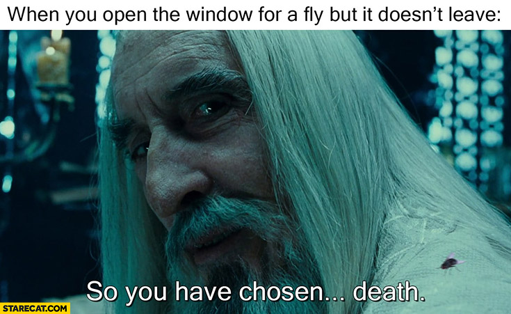 When you open window for a fly but it doesn't leave so you have chosen death Saruman
