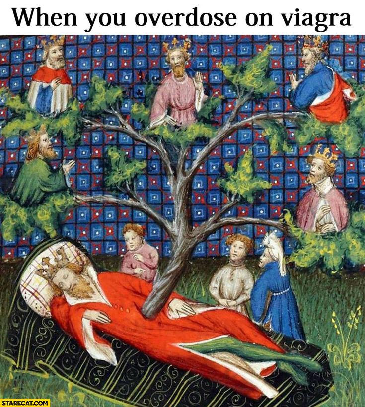 When you overdose on viagra tree