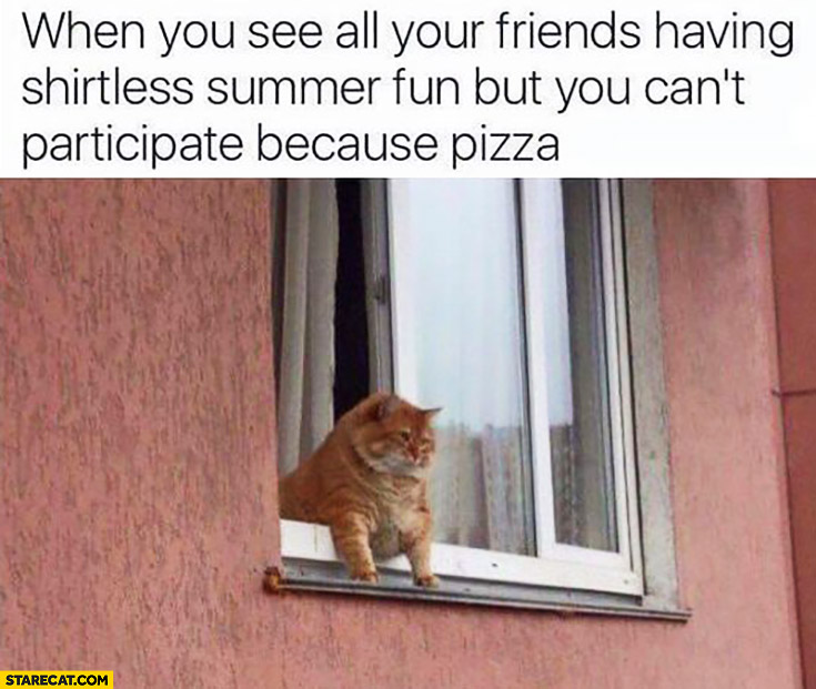 When you see all your friends having shirtless summer fun but you can't participate because pizza fat cat