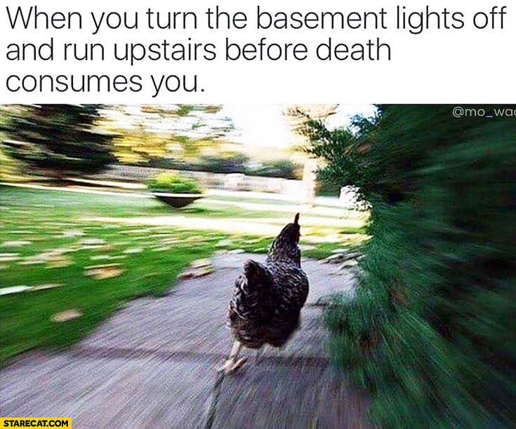 When you turn the basement lights off and run upstairs before death consumes you running chicken
