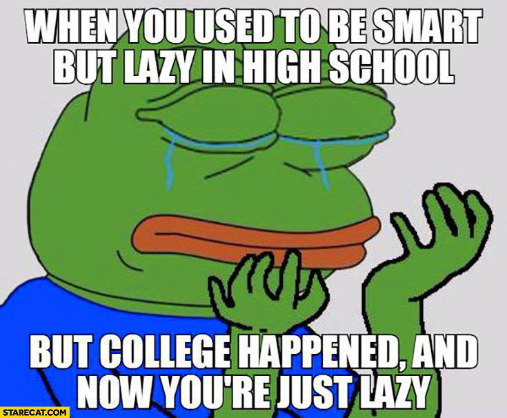 When you used to be smart but lazy in school but college happened and now you're just lazy. Sad frog meme