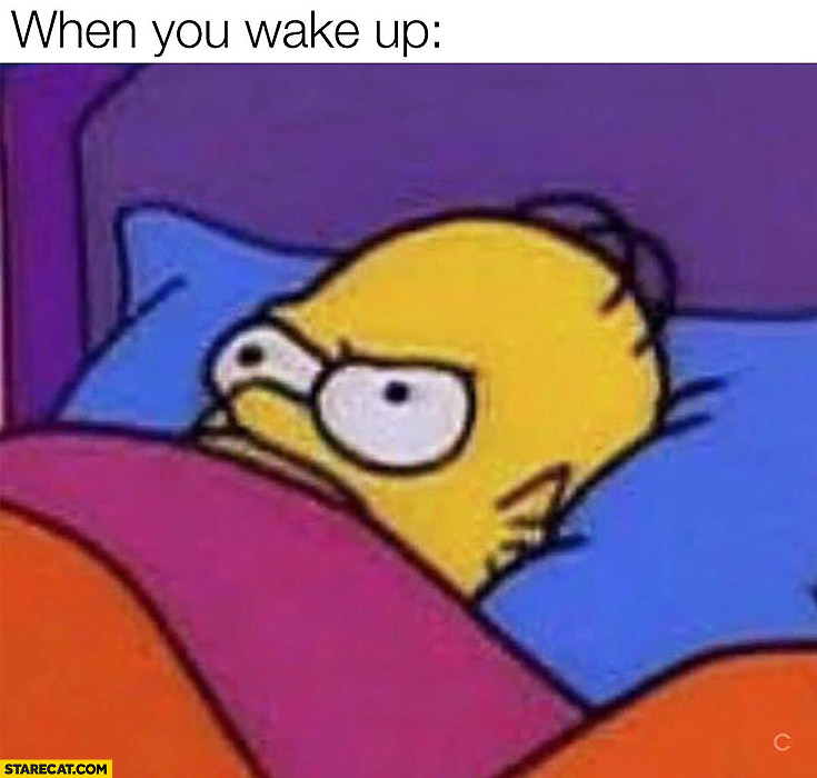 When you wake up Homer Simpson angry meme