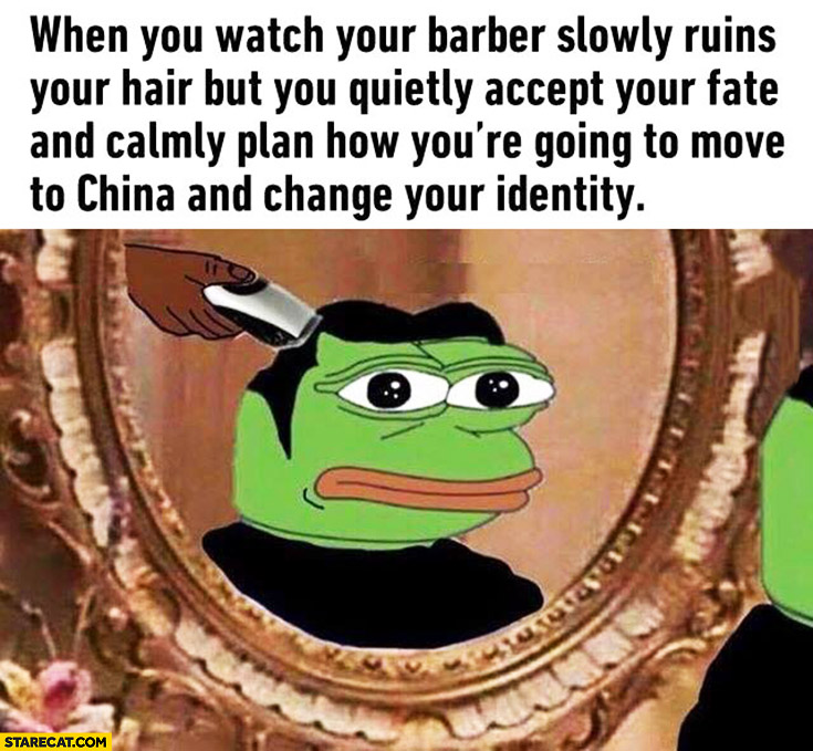 When you watch your barber slowly ruins your hair, but you quietly accept your fate and calmly plan how you're going to move to China and change your identity. Pepe the frog