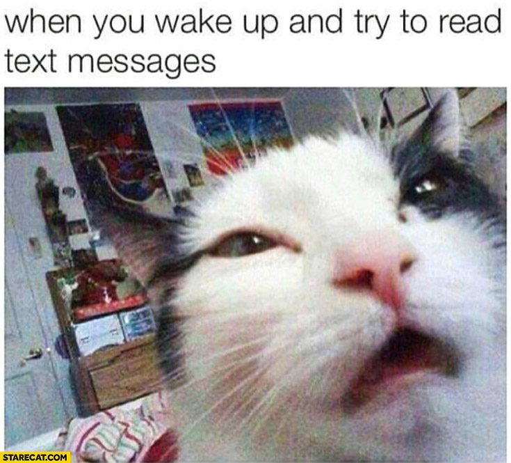 When you woke up and try to read text messages cat silly face