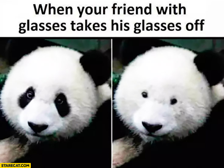 When your friend with glasses takes his glasses off panda bear without black spots