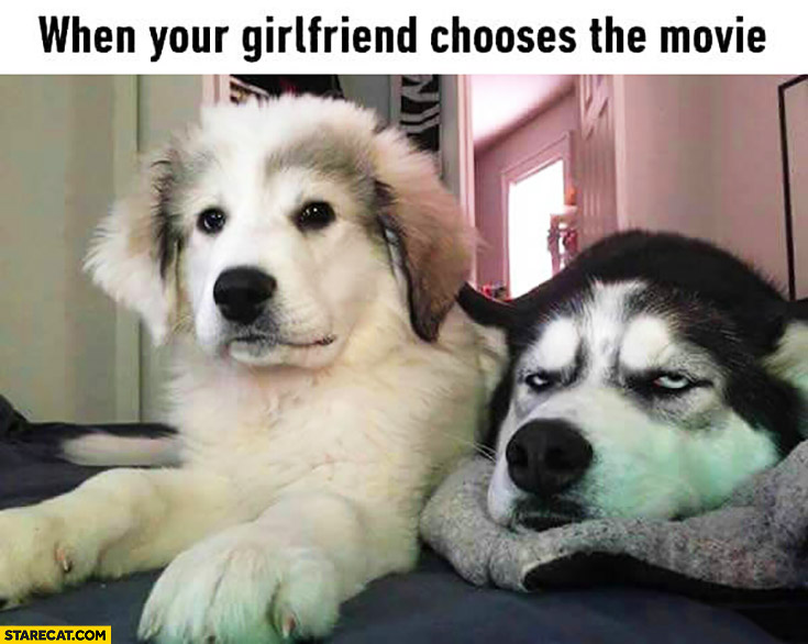 When your girlfriend chooses the movie bored dog