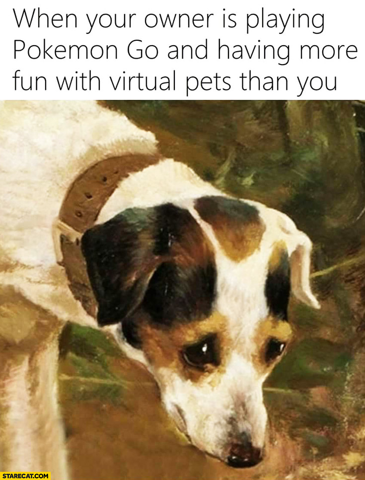 When your owner is playing Pokemon GO and having more fun with virtual pets than you sad dog