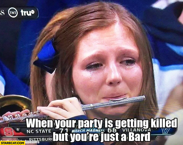 When your party is getting killed but you're just a bard girl crying