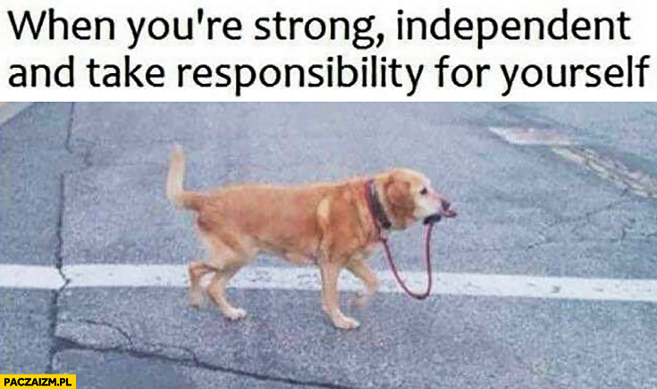 When you're strong independent dog and take responsibility for yourself