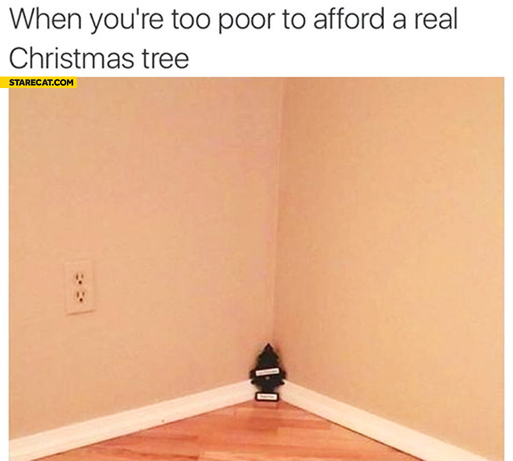 When you're too poor to afford a real christmas tree