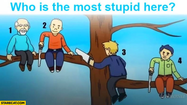 Who is the most stupid here? Guys sitting on tree branches