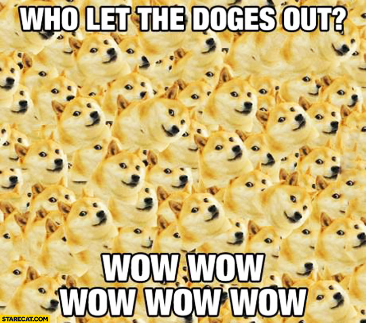 Who let the doges out? Wow wow