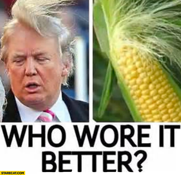Who wore it better? Donald Trump corn haircut