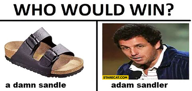 Who would win? A damn sandle vs Adam Sandler
