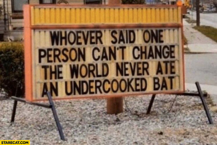 Whoever said one person can't change the world never ate an undercooked bat